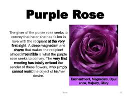 Meaning Of Pink Roses Flowers - roses 16 638 jpg cb u003d1360229039