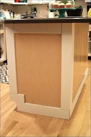 Cabinet Door Trim Cabinet Door Moulding Getanyjob Co