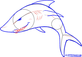 drawn dolphins shark pencil and in color drawn dolphins shark