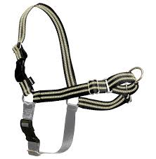guide dog harness 4 best dog harness choices for small dogs review u0026 ratings