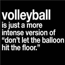 Hit The Floor Quotes - volleyball quote quote number 543963 picture quotes