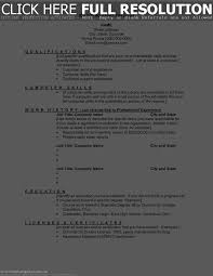 Resume Sample Technical Support by Brief Resume Sample Free Resume Example And Writing Download