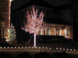 how to wrap christmas lights around a tree smart ideas tree wrap christmas lights outdoor led ribbon trunk