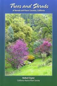 california native plant list 65 best how to save water images on pinterest save water