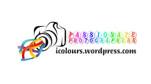 design photography logo photoshop passionate photographers all logos logos pixoto