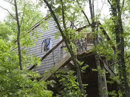 chambre d hote cabane dans les arbres cabane du pêcheur cabane dans les arbres de charme avec spa en