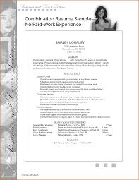 Resume For Career Change Sample by Amusing Combination Resume Examples Career Change With Sample