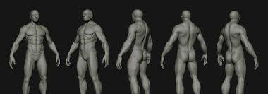 Human Anatomy Male Human Anatomy Male Eat 3d