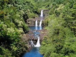World Botanical Gardens Hawaii