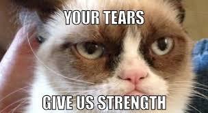 Grumpy Cat Photo 1 Best - image 015 best grumpy cat memes jpg creepypasta wiki fandom