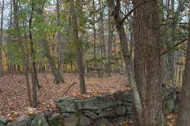 Bedford New York Visiting More Historic Cemeteries Of Bedford New York The