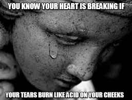 Heart Break Memes - you know your heart is breaking if heartbreak meme on memegen