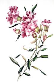 saatchi art chinese painting carnation painting by mayee futterman