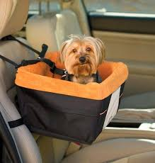 Gadgets For Pets 15 Must Have Travel Gadgets For Dogs