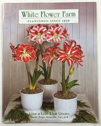 White Flower Farm Coupon Code - get free seed catalogs and plant catalogs