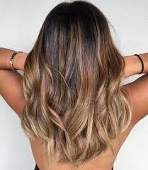 the latest hair colour trends 2015 calendar honey bear beige brunette mane interest honey bear brunettes