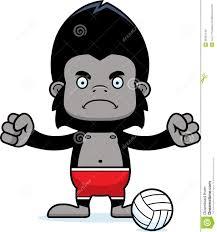 cartoon angry beach volleyball player gorilla stock vector image