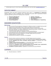 examples of resume profile luxury profile summary examples
