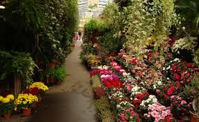 10 of the world u0027s best flower markets