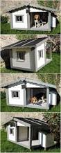 Home Design Story Dog Bone by Best 25 In The Dog House Ideas On Pinterest Dog Sleeping In Bed