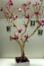 Tree Centerpiece Wedding by Best 20 Manzanita Tree Ideas On Pinterest Manzanita Tree