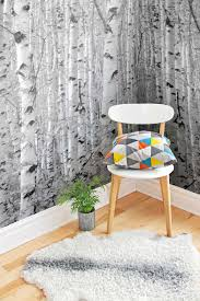 Wall Mural White Birch Trees Wall Mural Ideas Diy Inspiration For Home Decor