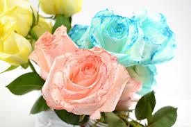 tie dye roses tie dye roses diy best 2017