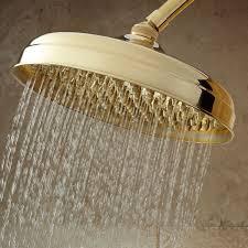 fresh best brass shower head and handle 5701