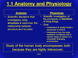 Essentials Of Human Anatomy And Physiology Notes Chapter 1 The Human Organism Unit 11 Chapter 1 Outline 1 1