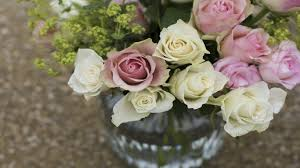 south pointe lexus edmonton hours callingwood flowers u2013 edmonton flower shop