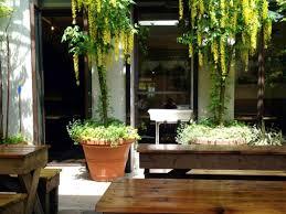 german restaurant nyc 11 great outdoor bars for beer lovers in new york city loreley