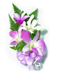 corsage flowers 4 blossom dendrobium orchid corsage aloha hawaiian flowers