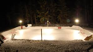 Backyard Hockey Download Hockey Archives Page 15 Of 20 Cavyhockey