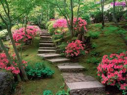 images of beautiful gardens amazing of beautiful gardens in beautiful gardens 5933
