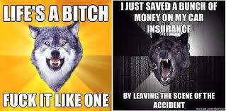 Scene Wolf Meme - brutal wolf memes memes pics 2018
