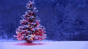 free christmas tree screensavers rainforest islands ferry