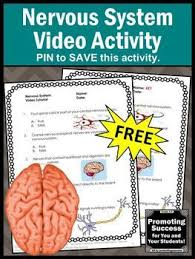 80 best elementary science classroom lessons images on pinterest
