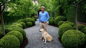 Topiary Dog Topiary The Growing Garden Trend Landscape Designers Are Loving