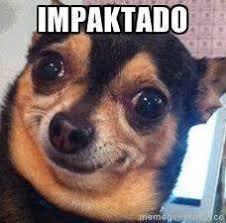 Omaiga Meme - leonardo animazulxgames 1 answer 1 like askfm