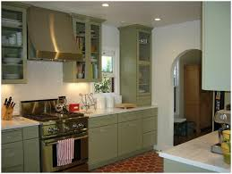 Kitchen Cabinet Door Colors Kitchen Green Kitchen Cabinet Doors Image Of Green Cabinets In