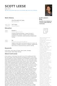 Pictures Of Resumes Examples by Vice President Of Sales Resume Samples Visualcv Resume Samples