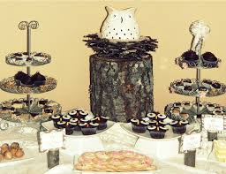 owl themed baby shower ideas owl themed baby shower guest feature celebrations at home