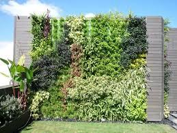Best Plants For Vertical Garden - 50 best minigarden vertical images on pinterest plants vertical
