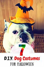 diy dog halloween costume 113 best dog costumes images on pinterest animals dog costumes