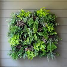 Wall Garden Ideas by Intricate Hanging Wall Garden Design Alluring Living Room Indoor