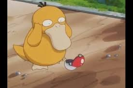 Psyduck Meme - let s take a moment to remember that psyduck was so dumb that he