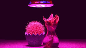 top 5 best led grow lights under 100 compare buy u0026 save