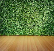 wooden leaves wall green leaves wall and wooden floor for background stock photo