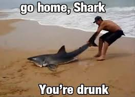 You Re Drunk Meme - go home youre drunk memes google search go home you re drunk