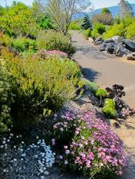The Australian Botanic Garden The Playground At The Australian Botanic Garden Mt Annan Great